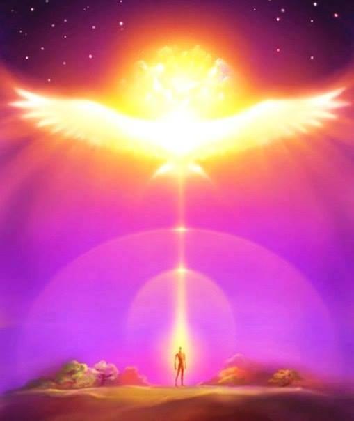 pleyadianos seres de luz